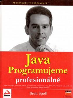 Java: Programujeme profesionálně